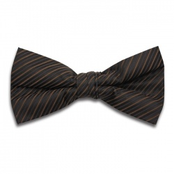 Polyester Pre-Tied Brown Bow Tie with Diagonal Stripe Design